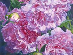 still life paintings by artist Barbara Fox