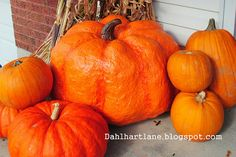 """Oh how fun! Giant Paper Mache Pumpkin Tutorial at Dahlhart Lane """"Several years ago, I found a tutorial on how to make giant-sized jack-o-l. Giant Pumpkin, Pumpkin Topiary, Pumpkin Art, Paper Pumpkin, Pumpkin Ideas, Pumpkin Crafts, Pumpkin Carving, Paper Mache Projects, Paper Mache Clay"""