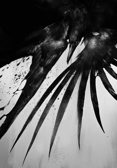 Find images and videos about photography, raven and crow on We Heart It - the app to get lost in what you love. Crow Art, Raven Art, Images Graffiti, Illustrations, Illustration Art, Quoth The Raven, Crows Ravens, Paul Klee, Foto Art