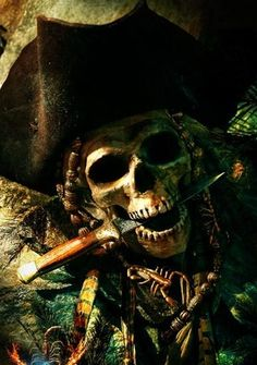 LOVE THIS PICTURE> Cutthroat !!! Pirate http://cbpirate.com/main/lmiller7