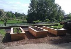 Image result for raise garden beds
