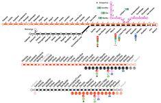 Le #métro de #Bilbao est le quatrième système de métro construite en Espagne, après Madrid, Barcelone et Valence. Ce sont deux lignes qui s´étendent aux deux côtés de la ría de Bilbao. Elles sont en forme de Y et sa longueur est de 43 kms. Il a des liens avec le tranway de Bilbao, alentours et long parcourue de Renfe, avec le réseau des trains régionaux (Euskotren train) et avec Termibus (bus de Bilbao).