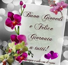Italian Memes, Good Morning, Place Cards, Place Card Holders, Day, Postcards, Facebook, Happy Birthday, Pine