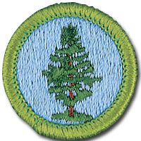 1000 images about tyler 39 s merit badges on pinterest merit badge boy scouts and scouts. Black Bedroom Furniture Sets. Home Design Ideas