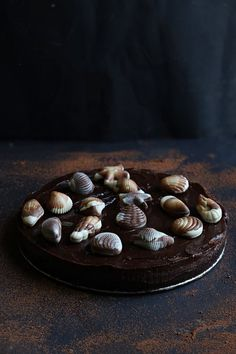Chocolate Seashell Cake | Sweet and Simple