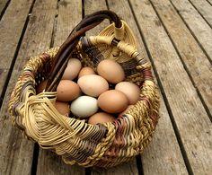 Appalachian egg basket