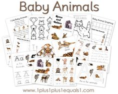 free baby animals pack (1+1+1=1 is one of my favorite sources for pre and early school activities and printables)