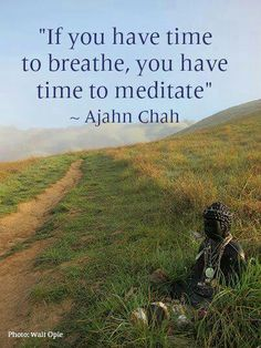 If you have time to breathe, you have time to meditate. ~Ajahn Chah