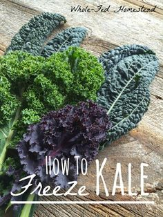 A guide to freezing kale easily in usable portions. How to preserve kale and enjoy garden-fresh kale all year round. Freezing Fruit, Freezing Vegetables, Fruits And Veggies, Cocina Light, Detox Soup, Canning Recipes, Veggie Recipes, Freezer Recipes, Freezer Cooking