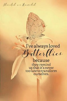 Trendy Quotes About Strength To Move On Mottos Wisdom Quotes, Me Quotes, Motivational Quotes, Vinyl Quotes, Wall Quotes, The Words, Butterfly Quotes, Butterfly Meaning, Butterfly Art