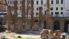 Conocen el área sacra de Largo di Torre Argentina? - Blog de Elisa N | Viajes, Fotografía y Lifestyle