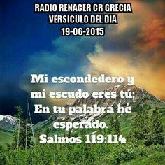 Versículo del dia Salmos.119.114.  Mi escondedero y mi escudo eres tú; En tu palabra he esperado.