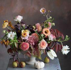 Die 478 Besten Bilder Von Blumen In 2019 Beautiful Flowers