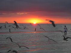 Sunset, Lido Beach, Sarasota, FL