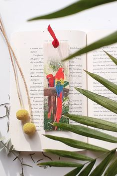 Keep track of your place in a favourite book, journal or magazine with this unique handmade wood macaw bookmark. You will no longer need to reach for an old receipt or scrap of paper to mark your place…and no more folding the corners of pages! Each bookmark is handmade in Australia using lightweight, flexible wood, gorgeous photo image transfer and finished with coloured ribbon. #stitchandwood #bookmark #macaws #giftidea #birds Flexible Wood, Wood Transfer, Tropical Birds, Ribbon Colors, Book Journal, Book Lovers, Are You The One, Bookmarks, Mall