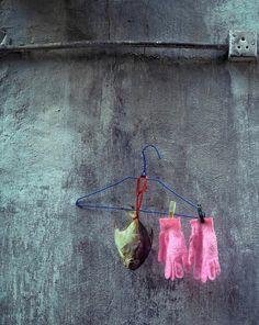 not shaking the grass - Michael Wolf - Hong Kong: Front Door/Back Door. Wolf Photography, Street Photography, Hong Kong, Michael Wolf, Duane Michals, Still Life Photos, Robert Doisneau, Clothes Line, Installation Art
