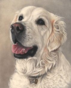 Lovely! >> Holly Cottage Fine Art: Realistic pet portraits from your photographs.