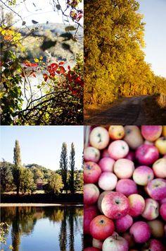 Autumn, glorious autumn