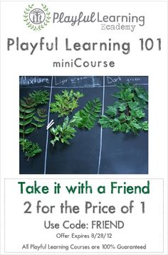 I am excited about our new Playful Learning 101 miniCourse! Now you can take it with a friend and register two people for the price of one!