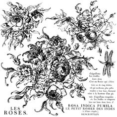 Rose Toile Decor Stamps