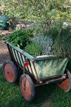 Handcart as a cell herb mattress - Garden Design Tips Love Garden, Herb Garden, Garden Tools, Garden Ideas, New Kitchen Doors, Diy Projects For Beginners, Diy Chicken Coop, Gardening Supplies, Wheelbarrow
