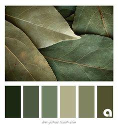 Colour Pallete, Colour Schemes, Color Combos, Color Palettes, Paleta Pantone, Color Symbolism, Deco Zen, Color Plan, Design Seeds