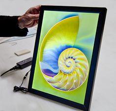LED Back Lit Panels Edison Lighting, Display, Led, Lights, Design, Floor Space, Billboard, Lighting, Design Comics