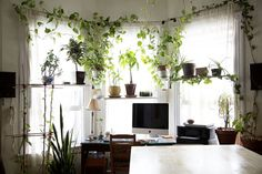 Un bureau comme un jardin posted byL'Art de la Curiosité