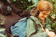 Hero of the Day: Dian Fossey gave her life to help protect gorillas.