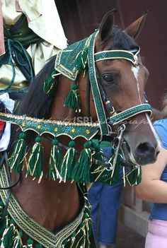 How to make an Arabian Native Costume discussion... Green & gold is beautiful on a bay