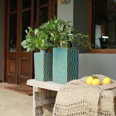 Tapas, Planter Pots, Sweet Home, Instagram, Bag, Bud Vases, Vases, Country Homes, Courtyards