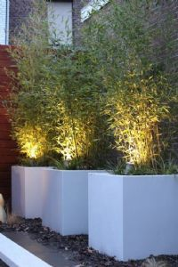 EVolution Comfort Line Garden Spotlight Complete Set incl. Outdoor Garden Lighting, Landscape Lighting, Outdoor Gardens, Terrace Garden, Garden Planters, Garden Dividers, Back Gardens, Backyard Landscaping, Garden Inspiration