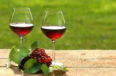 Vinul este o artă. Și arta trebuie înțeleasă