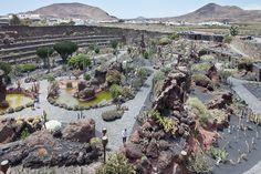 Jardín_de_Cactus_-_Guatiza_-_Lanzarote_-_J20.jpg (1600×1067)