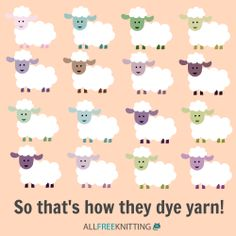 So that's how they dye yarn! :)