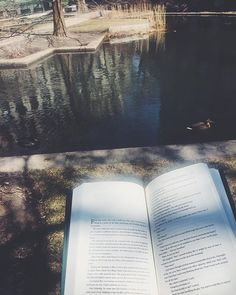 Happy Friday readers! I'm now reading THE LAND OF LOVE AND DROWNING by Tiphanie Yanique. It's been on my shelf for a long time so I'm excited to finally dive in. #readingandwalking #thelandofloveanddrowning #tiphanieyanique #books #reading #readingwhilewalking