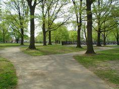 Canarsie Park, Brooklyn NY