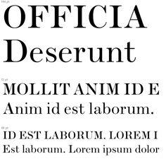 Serif Typeface, Lorem Ipsum, Math Equations, Signs, Shop Signs, Sign