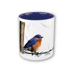 Coffee Mug with Bluebird Photograph
