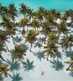 "Polubienia: 41.4 tys., komentarze: 188 – Beaches N Resorts (@beaches_n_resorts) na Instagramie: ""Panglao - Philippines 🌴🌴🌴 Credits ✨@warrencamitan✨ . #beachesnresorts for a feature ❤️"""