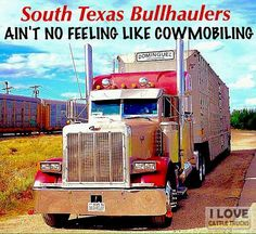 Thanks and all credits to Cesar N Garza Big Rig Trucks, Semi Trucks, Tractor Pictures, South Texas, New Words, Tractors, American, Livestock, Cattle