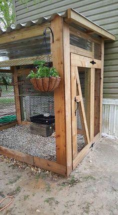Outdoor aviary idea