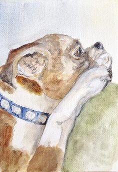 Still enough time for holiday gifts! Pet and People Portraits Acrylics Watercolors by AnIllustratedHome