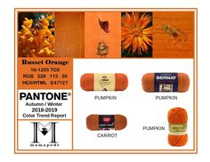 Russet Orange - Pantone Color Trend Report Autumn Winter 2018 2019 Fashion trend analysis and yarn matching by mamapode Tight Crochet Mango Mojito, Pink Peacock, Trend Analysis, Fall Winter, Autumn, Fall Pumpkins, Pantone Color, Craft Fairs, Color Trends