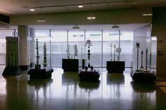 philadelphia international airport, terminal a west, ellen Sall, from 7/13 for 6 months