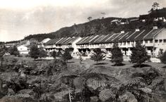Title - Cameron Highlands 3 / Year - 1950's / Location - Cameron Highlands, Pahang / Description - Tanah Rata in 1950's