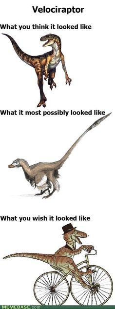 Google Image Result for http://chzmemebase.files.wordpress.com/2012/04/internet-memes-velociraptor.jpg