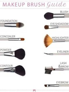 Makup Brush Guide fashion girly make up diy makeup makeup brushes