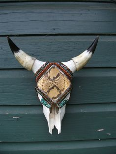 Real Steer Skull Adobe Python  Wall Art by minilonghorns on Etsy, $375.00