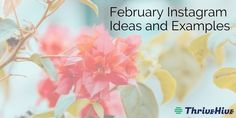 February Instagram Ideas and Examples #instagramideas #instagram #thrivehive